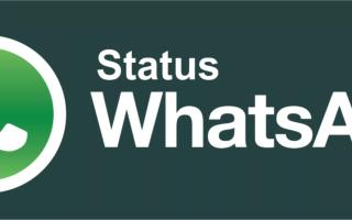 Как убрать или изменить статус в Ватсап?