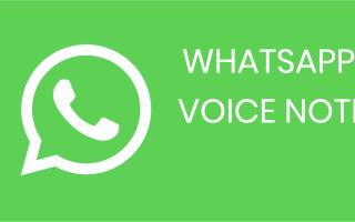Папка Whatsapp Voice Notes