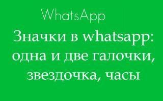 Что означают одна и две галочки Whatsapp? Значки в Whatsapp