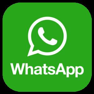 WhatsApp что это, или 5 вещей о WhatsApp, которые должен знать каждый